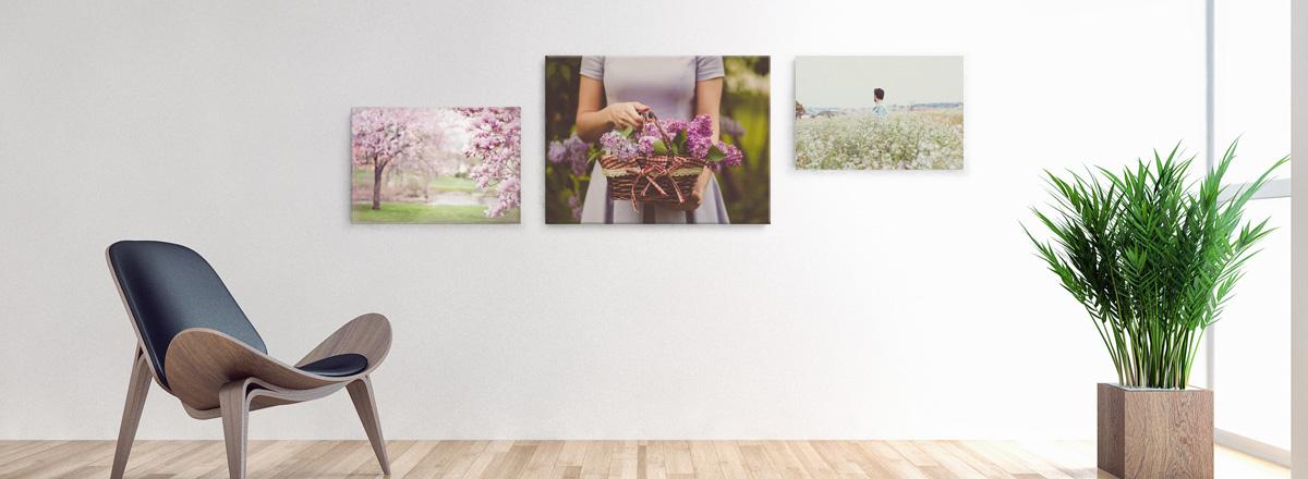 Wandbilder - der Hingucker in Ihren 4-Wänden