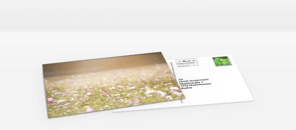 Foto-Postkarte online gestalten und bestellen